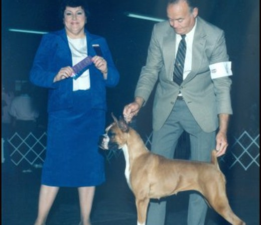 Greenville Missisippi Kennel Club -- 1988