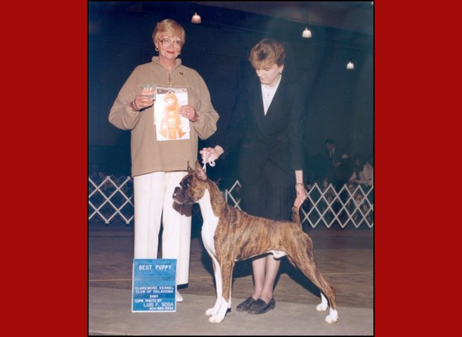 1st Show -- Best Puppy -- Boxer Club of Oklahoma -- 03/21/2001
