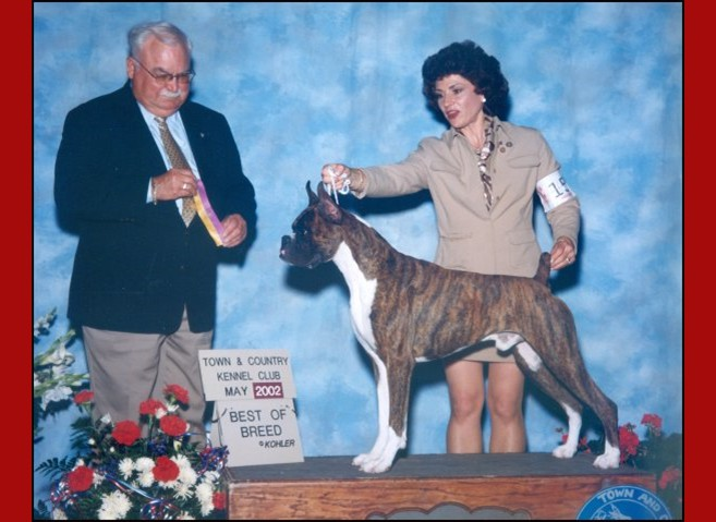 Group 3 / Best of Breed -- Town & Country Kennel Club --05/05/2002