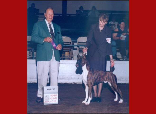 Winners Dog -- Ozarks Kennel Club -- 04/29/2001