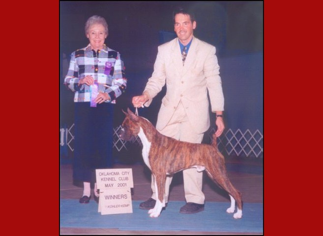 Winners Dog -- Oklahoma City Kennel Club -- 05/06/2001