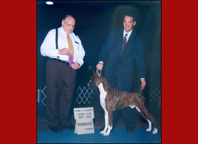 Winners Dog -- Town & Country Kennel Club -- 05/04/2001