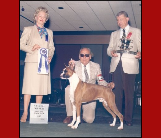 1983 ABC National -- Reserve Winners Dogs