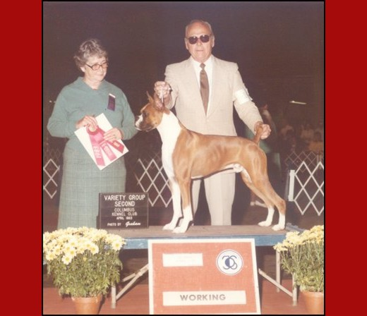 Group 2/BOB/BOW/WD -- Columbus Kennel Club - 1983